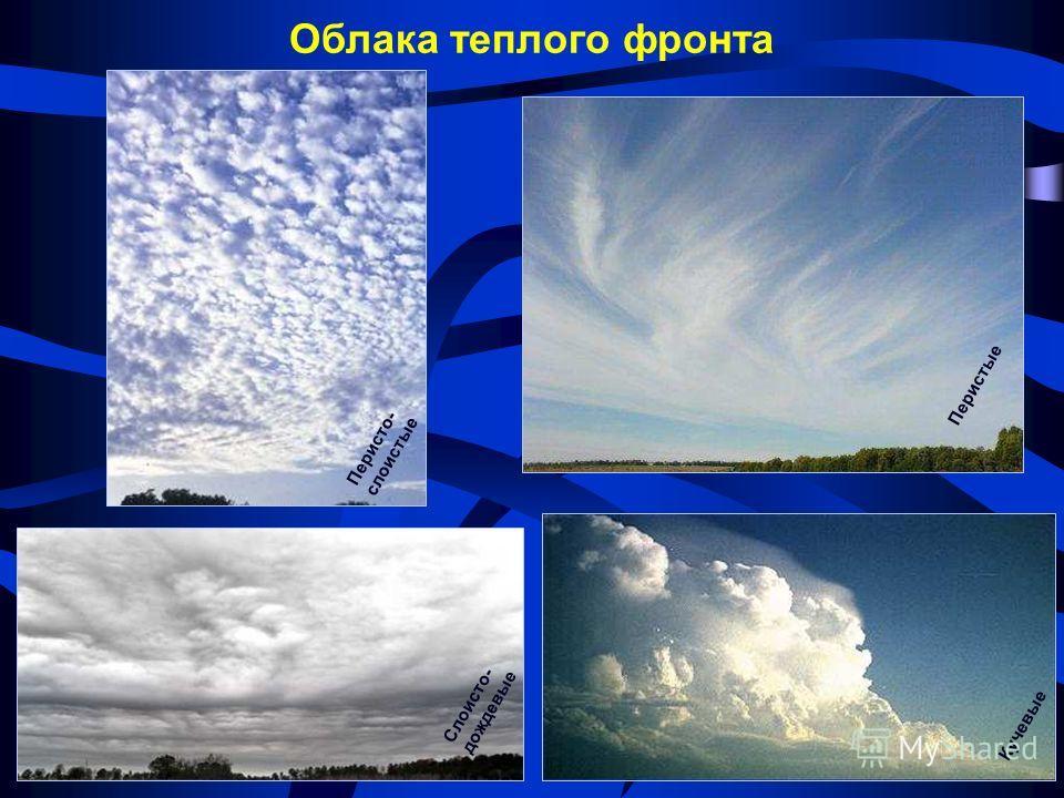 Облака теплого фронта Перистые Перисто- слоистые Слоисто- дождевые Кучевые