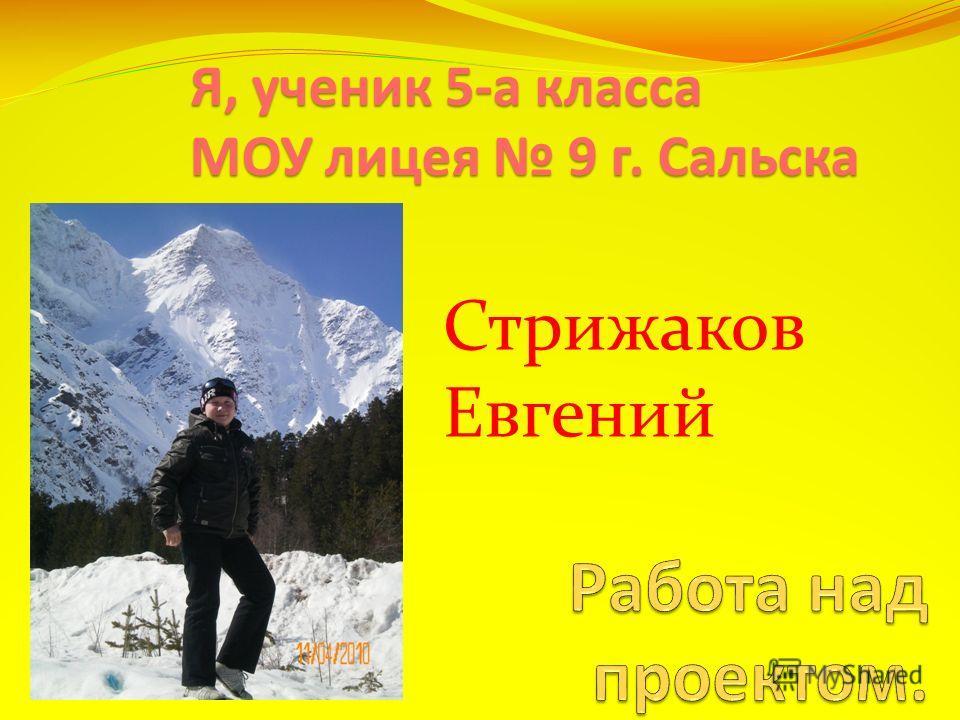 Я, ученик 5-а класса МОУ лицея 9 г. Сальска Стрижаков Евгений
