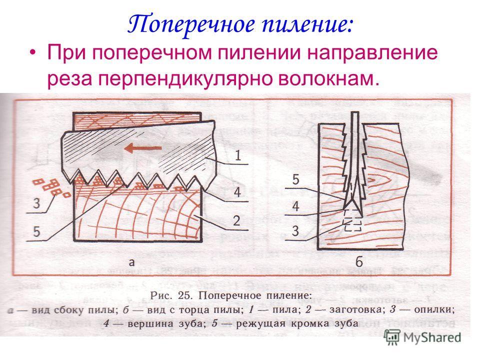 Поперечное пиление: При поперечном пилении направление реза перпендикулярно волокнам.