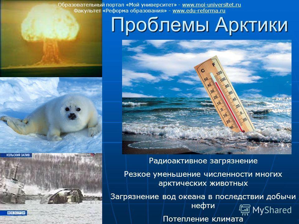 Проблемы Арктики Радиоактивное загрязнение Резкое уменьшение численности многих арктических животных Загрязнение вод океана в последствии добычи нефти Потепление климата Образовательный портал «Мой университет» - www.moi-universitet.ruwww.moi-univers