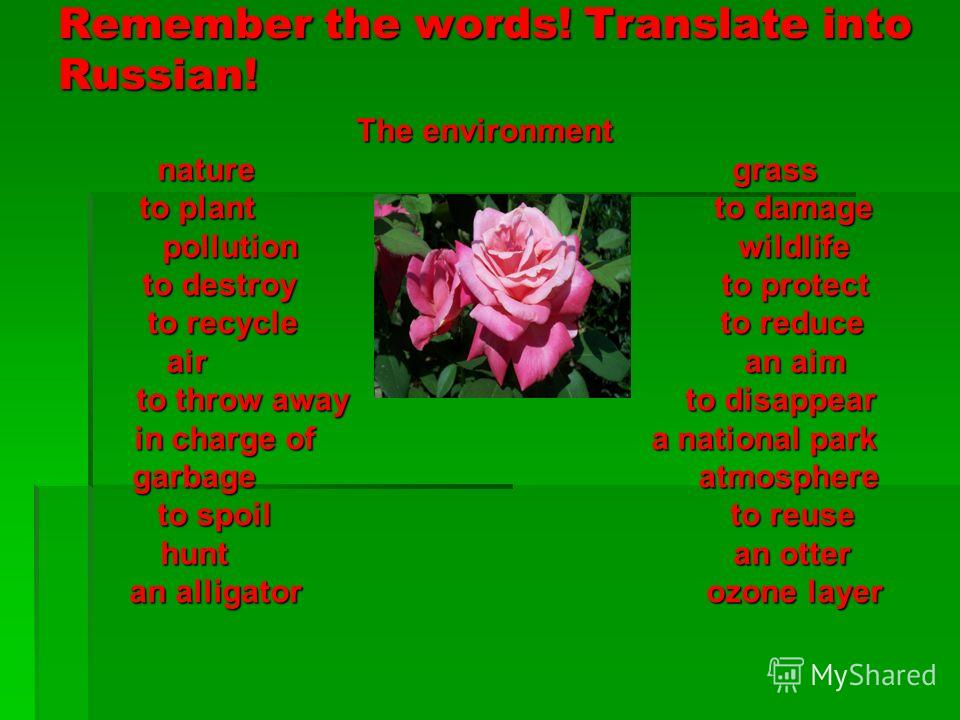Remember the words! Translate into Russian! The environment nature grass nature grass to plant to damage to plant to damage pollution wildlife pollution wildlife to destroy to protect to destroy to protect to recycle to reduce to recycle to reduce ai