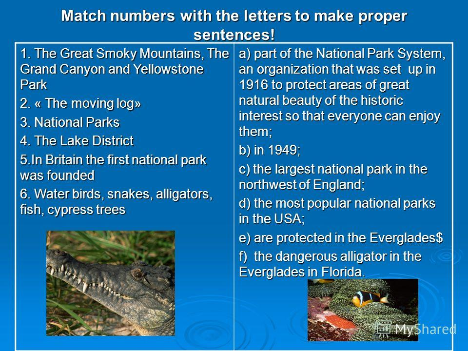 Match numbers with the letters to make proper sentences! 1. The Great Smoky Mountains, The Grand Canyon and Yellowstone Park 2. « The moving log» 3. National Parks 4. The Lake District 5.In Britain the first national park was founded 6. Water birds,