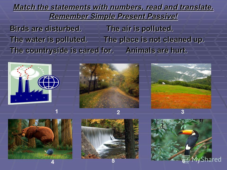 Match the statements with numbers, read and translate. Remember Simple Present Passive! Birds are disturbed. The air is polluted. The water is polluted. The place is not cleaned up. The countryside is cared for. Animals are hurt. 1 2 3 4 5 6