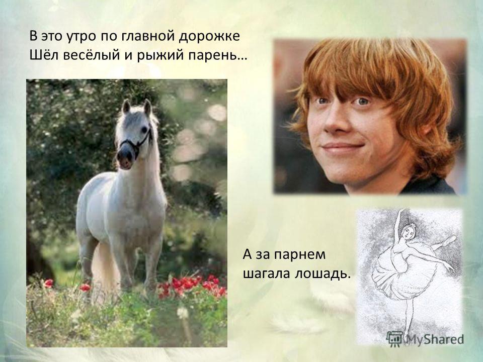В это утро по главной дорожке Шёл весёлый и рыжий парень… А за парнем шагала лошадь.