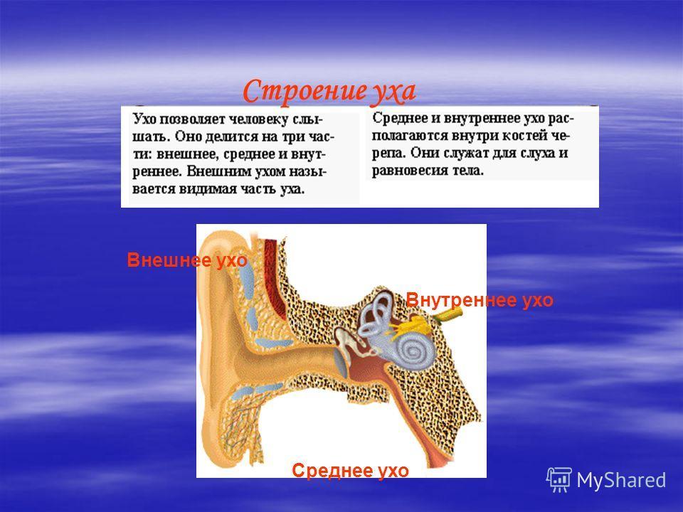 Отосклероз фото
