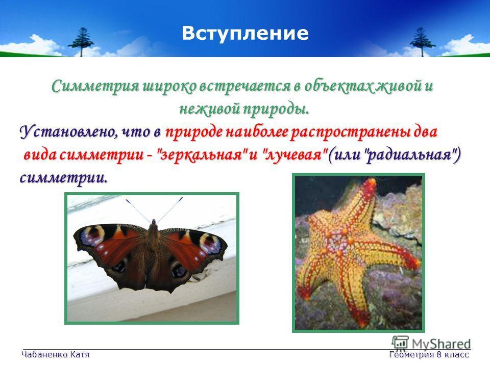 Чабаненко Катя Геометрия 8 класс Симметрия широко встречается в объектах живой и неживой природы. неживой природы. Установлено, что в природе наиболее распространены два вида симметрии -