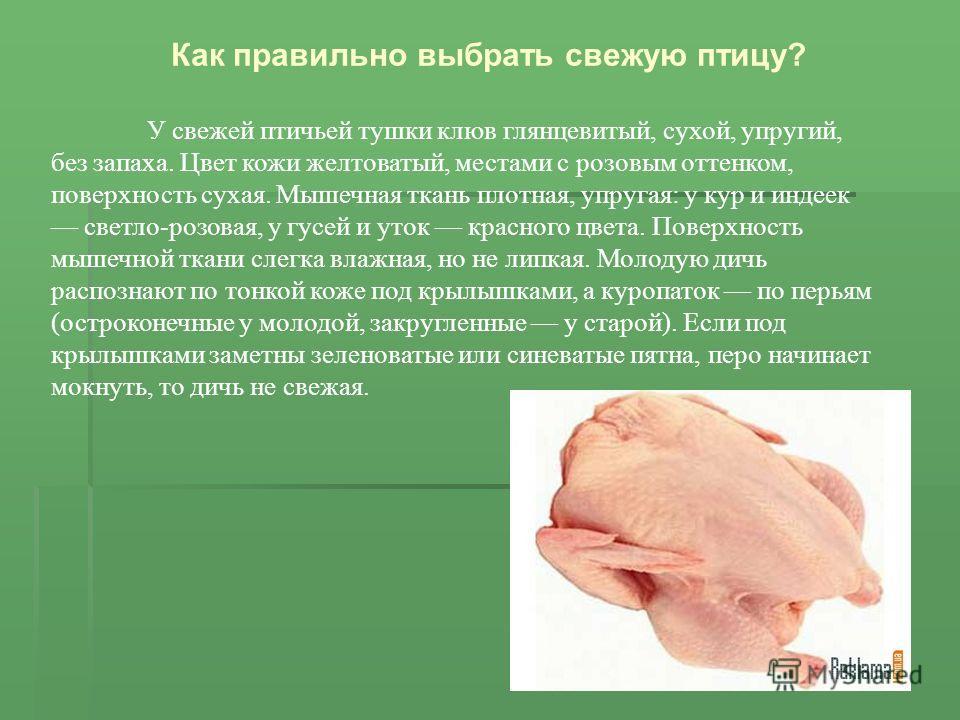 У свежей птичьей тушки клюв глянцевитый, сухой, упругий, без запаха. Цвет кожи желтоватый, местами с розовым оттенком, поверхность сухая. Мышечная ткань плотная, упругая: у кур и индеек светло-розовая, у гусей и уток красного цвета. Поверхность мышеч