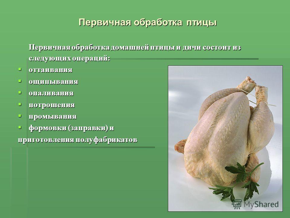Первичная обработка птицы Первичная обработка домашней птицы и дичи состоит из следующих операций: оттаивания оттаивания ощипывания ощипывания опаливания опаливания потрошения потрошения промывания промывания формовки (заправки) и формовки (заправки)