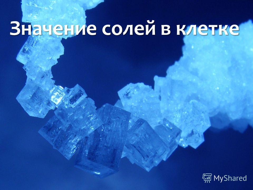 Значение солей в клетке Значение солей в клетке