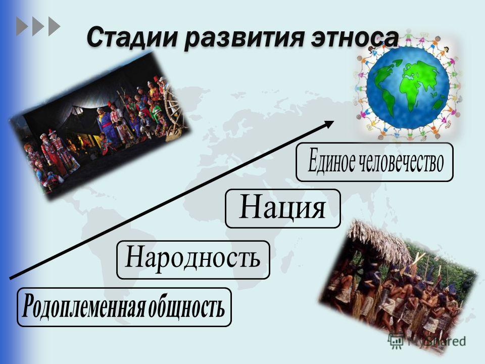 Стадии развития этноса