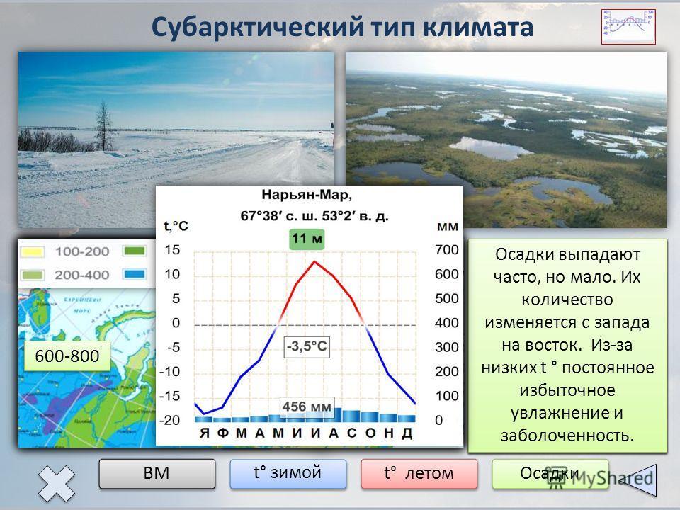 Субарктический тип климата ВМ t° зимой t° летомОсадки Субарктический пояс расположен к югу от арктического пояса. Южная граница примерно совпадает с Северным полярным кругом. В Сибири граница смещена значительно к югу. кАВ мАВ кУВ В субарктическом по