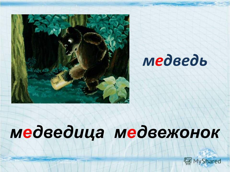 медведь медведица медвежонок
