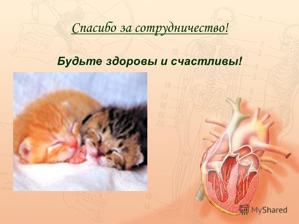 Спасибо за сотрудничество! Будьте здоровы и счастливы!