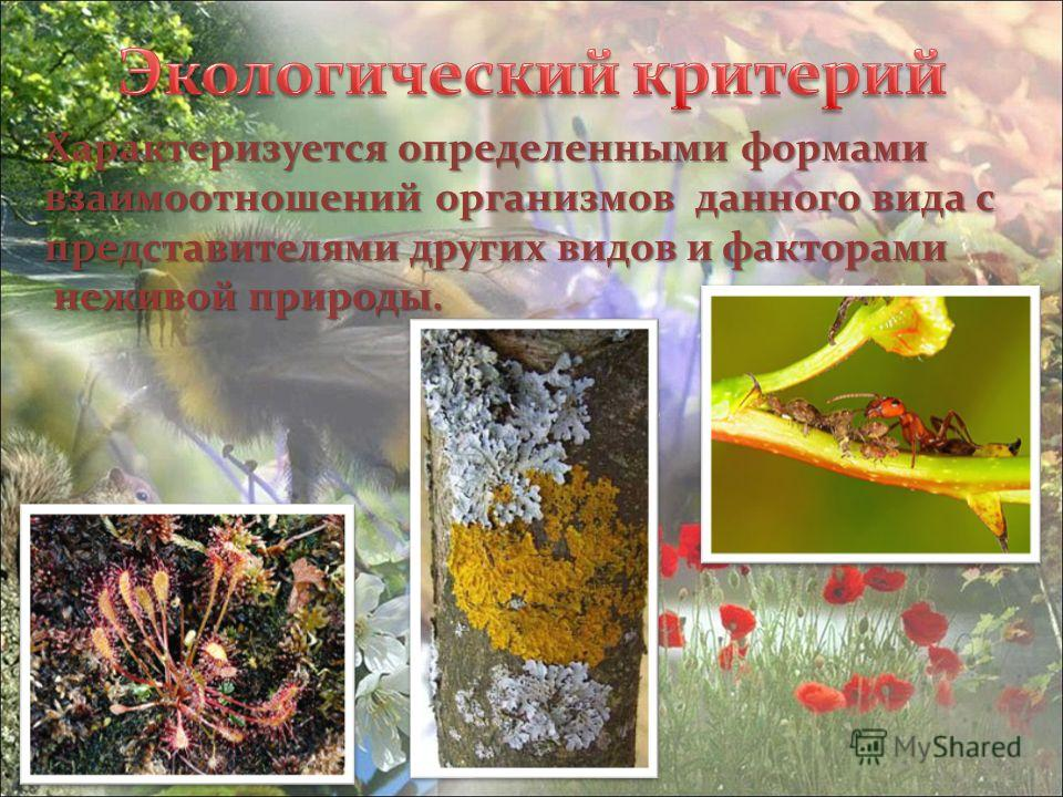 Характеризуется определенными формами взаимоотношений организмов данного вида с представителями других видов и факторами неживой природы. неживой природы.