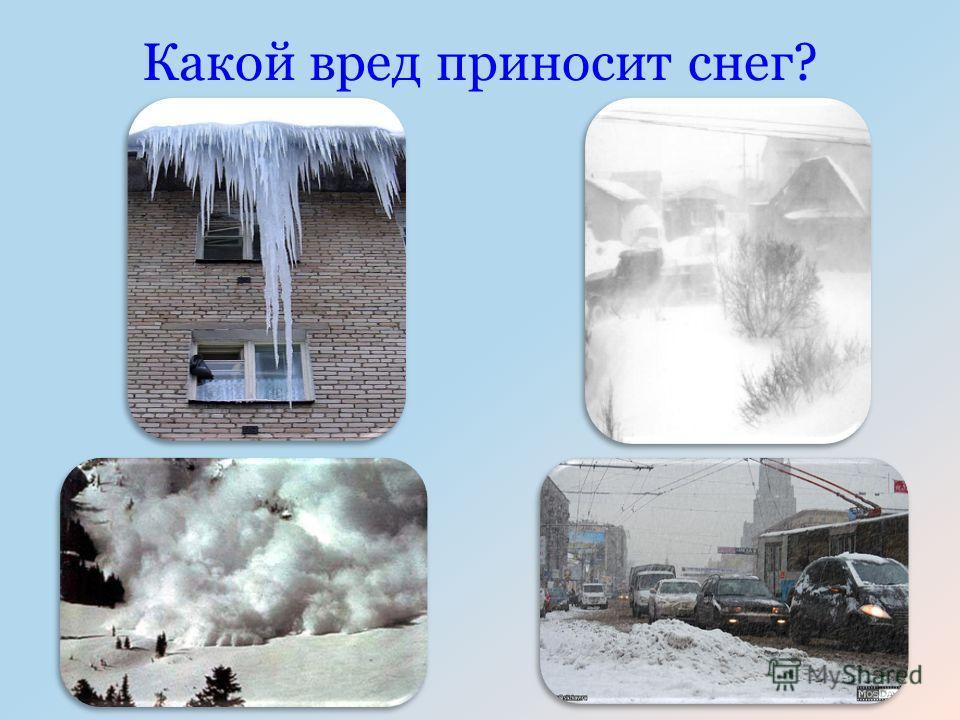 Какой вред приносит снег?