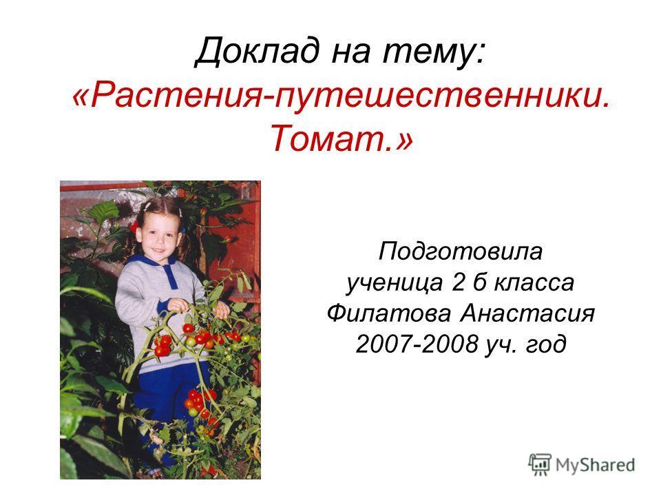 Доклад на тему: «Растения-путешественники. Томат.» Подготовила ученица 2 б класса Филатова Анастасия 2007-2008 уч. год