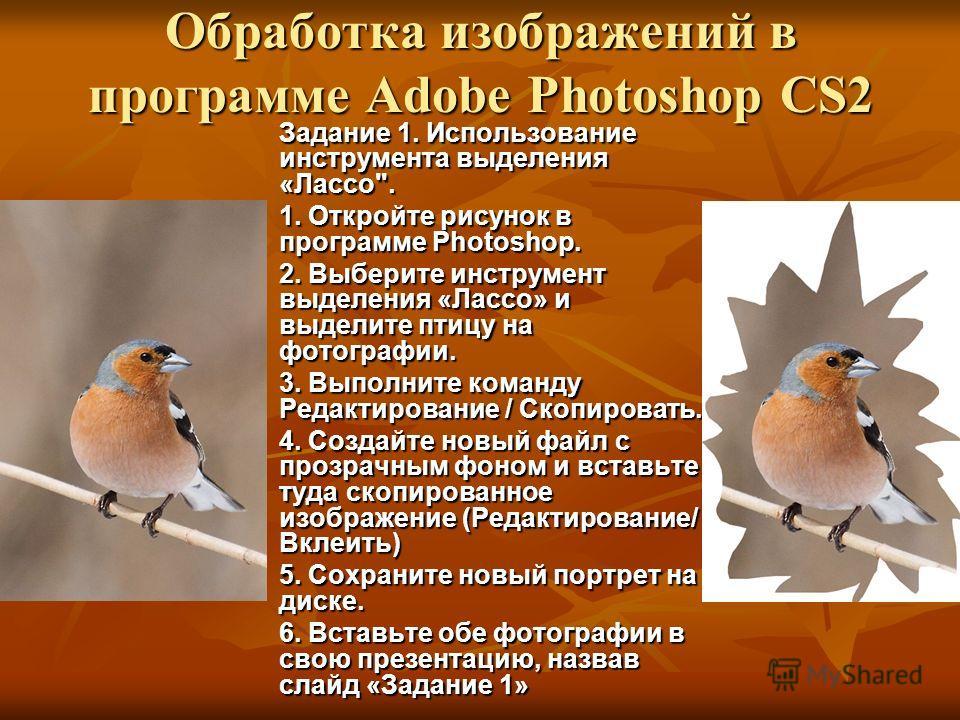 Обработка изображений в программе Adobe Photoshop CS2 Задание 1. Использование инструмента выделения «Лассо