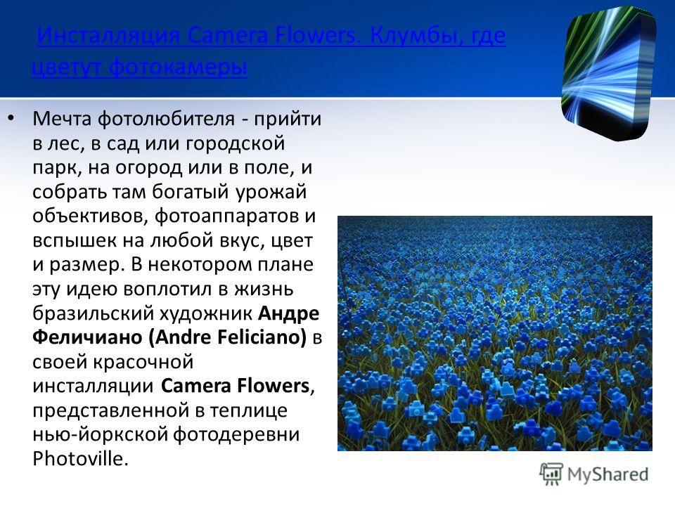 Инсталляция Camera Flowers. Клумбы, где цветут фотокамеры Инсталляция Camera Flowers. Клумбы, где цветут фотокамеры Мечта фотолюбителя - прийти в лес, в сад или городской парк, на огород или в поле, и собрать там богатый урожай объективов, фотоаппара