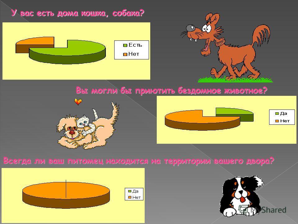 У вас есть дома кошка, собака? Вы могли бы приютить бездомное животное? Вы могли бы приютить бездомное животное? Всегда ли ваш питомец находится на территории вашего двора?
