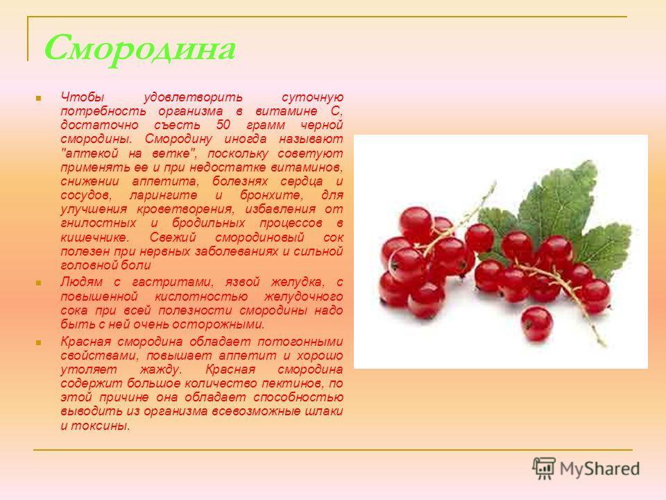 Смородина Чтобы удовлетворить суточную потребность организма в витамине С, достаточно съесть 50 грамм черной смородины. Смородину иногда называют
