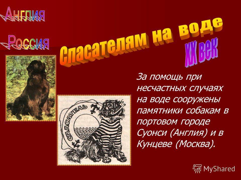 За помощь при несчастных случаях на воде сооружены памятники собакам в портовом городе Суонси (Англия) и в Кунцеве (Москва).