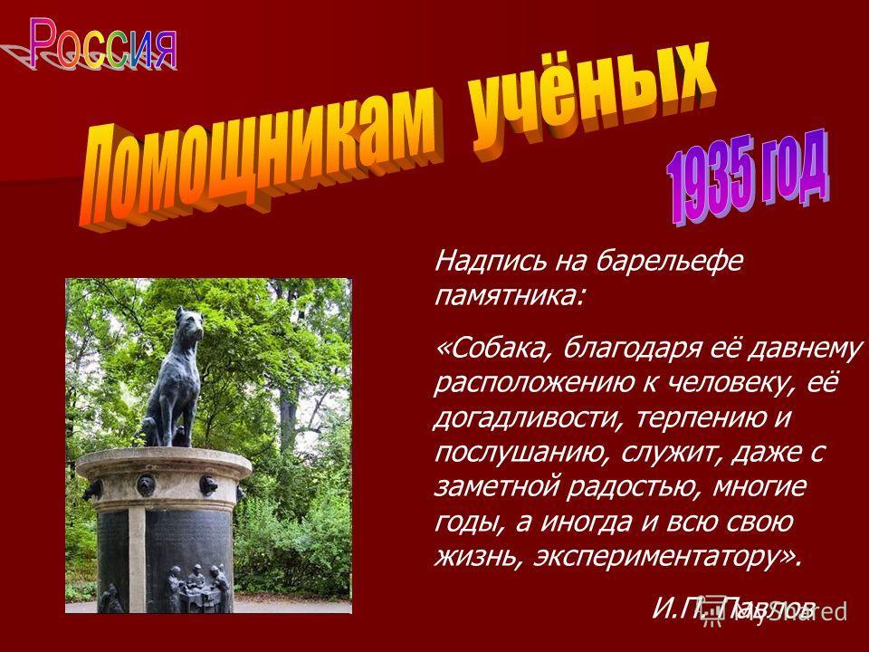Надпись на барельефе памятника: «Собака, благодаря её давнему расположению к человеку, её догадливости, терпению и послушанию, служит, даже с заметной радостью, многие годы, а иногда и всю свою жизнь, экспериментатору». И.П. Павлов