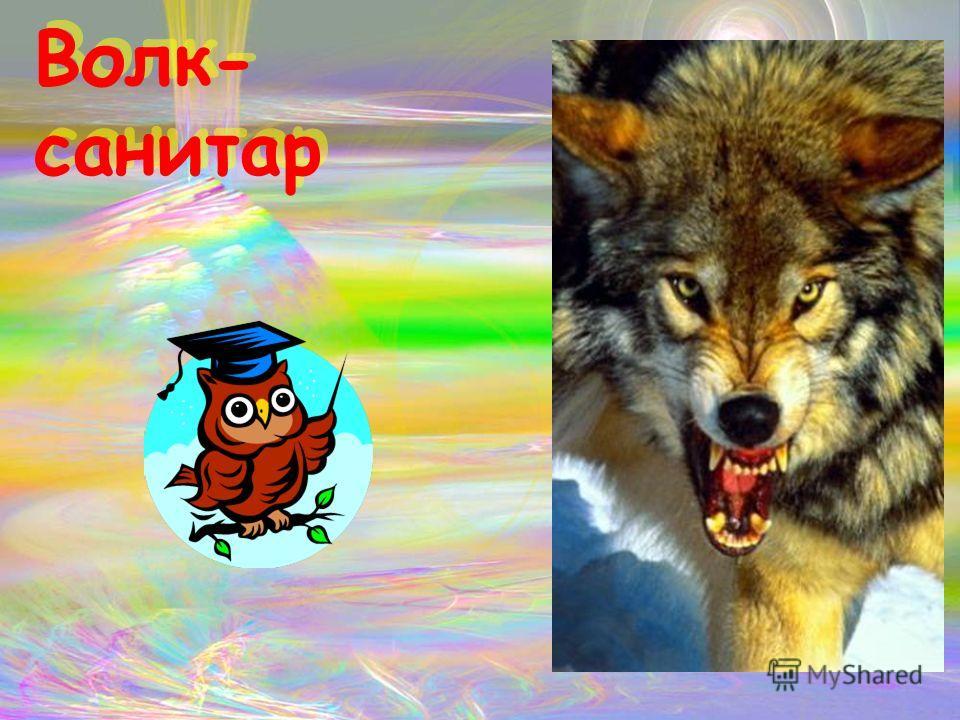 Волк- санитар Волк- санитар
