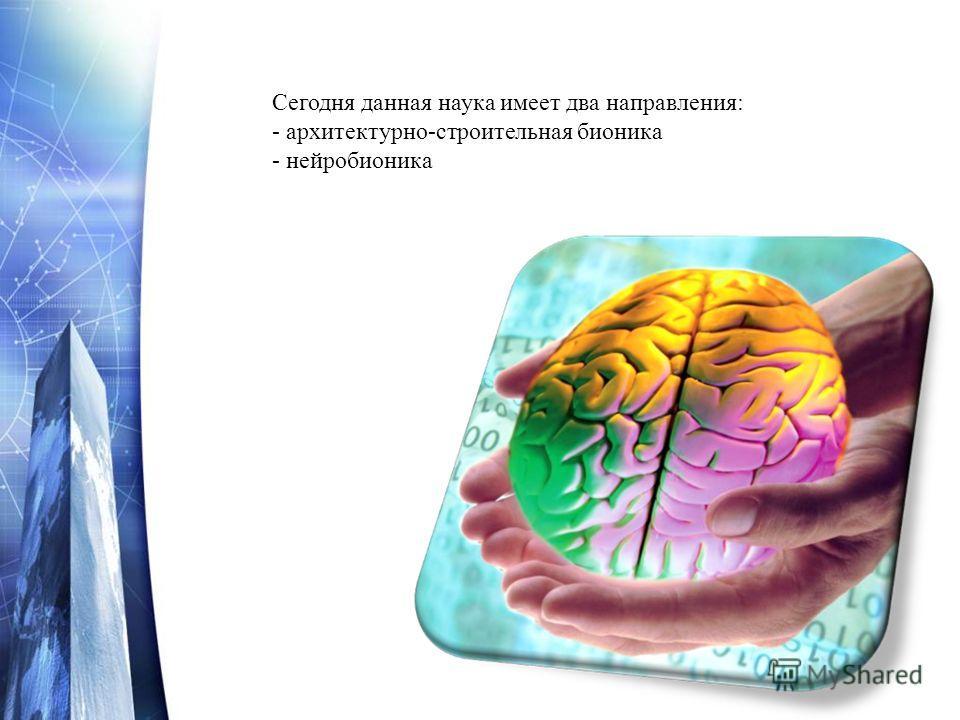 Сегодня данная наука имеет два направления: - архитектурно-строительная бионика - нейробионика
