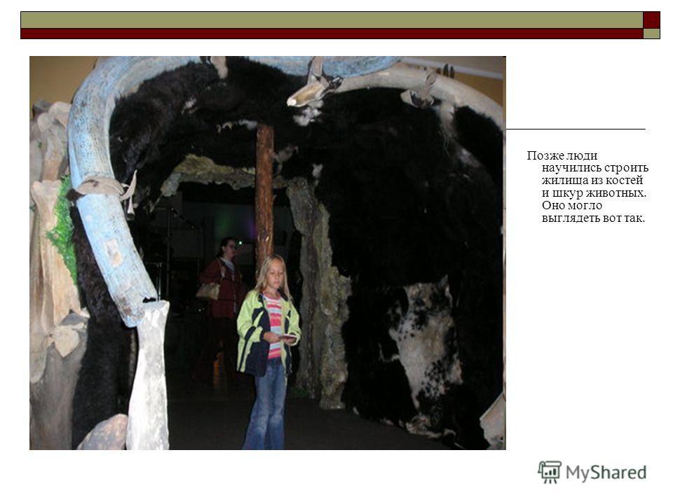 Позже люди научились строить жилища из костей и шкур животных. Оно могло выглядеть вот так.