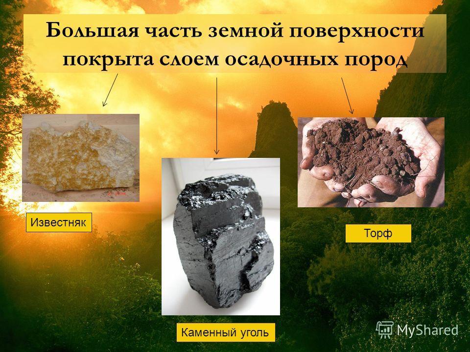 Большая часть земной поверхности покрыта слоем осадочных пород Известняк Каменный уголь Торф