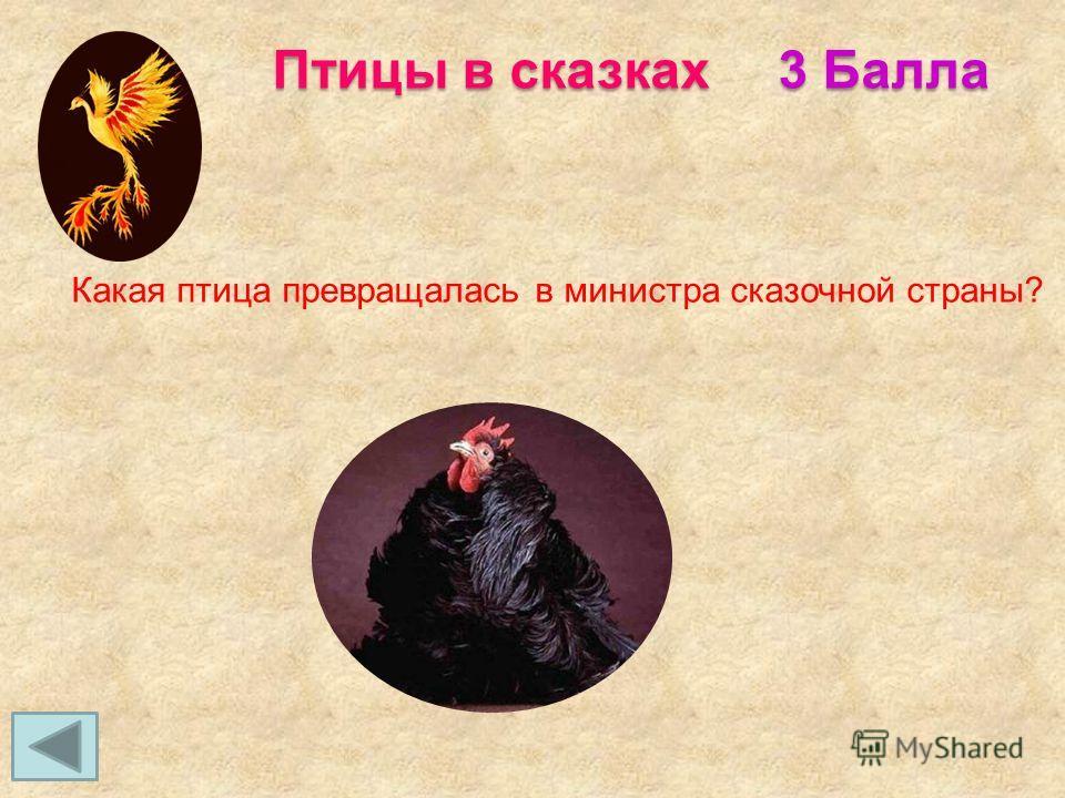 3 Балла Птицы в сказках Какая птица превращалась в министра сказочной страны?