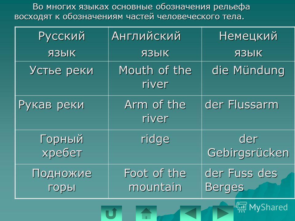 Несмотря на то, что языки такие разные, в них можно увидеть некоторые общие черты (универсалии): - во всех языках есть гласные и согласные звуки; - во всех языках есть гласные и согласные звуки; - в каждом языке есть слоги; - в каждом языке есть слог