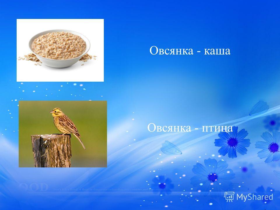 Овсянка - каша Овсянка - птица
