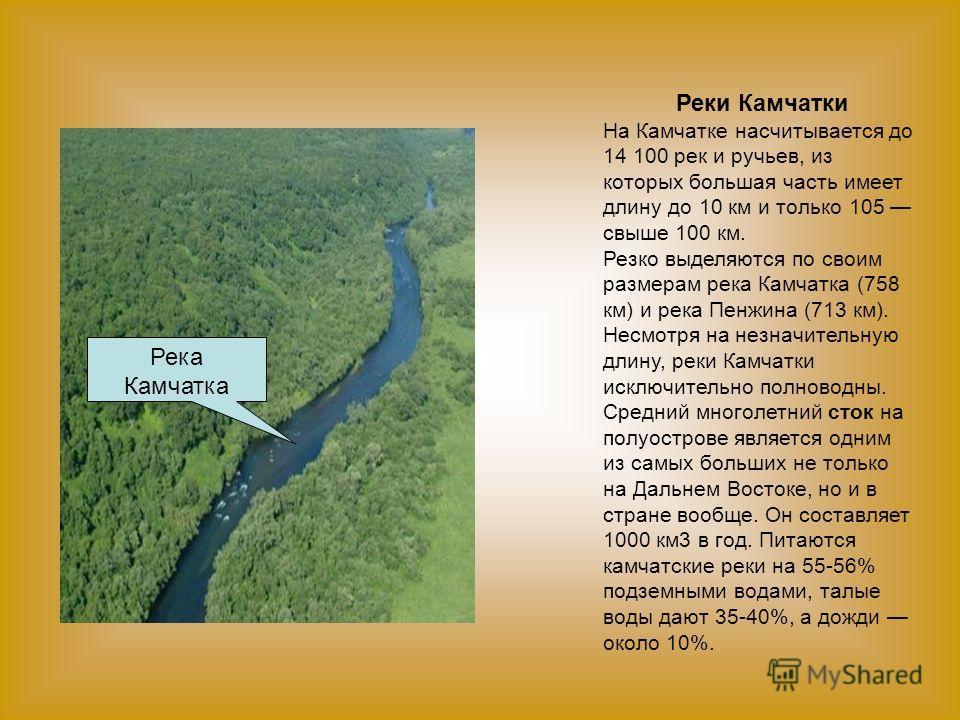 Реки Камчатки На Камчатке насчитывается до 14 100 рек и ручьев, из которых большая часть имеет длину до 10 км и только 105 свыше 100 км. Резко выделяются по своим размерам река Камчатка (758 км) и река Пенжина (713 км). Несмотря на незначительную дли
