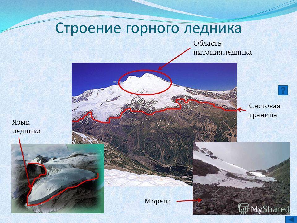 Строение горного ледника Область питания ледника Снеговая граница Язык ледника Морена