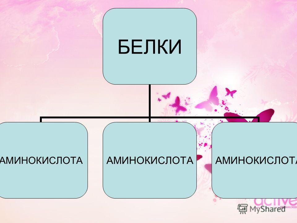 БЕЛКИ АМИНОКИСЛОТА