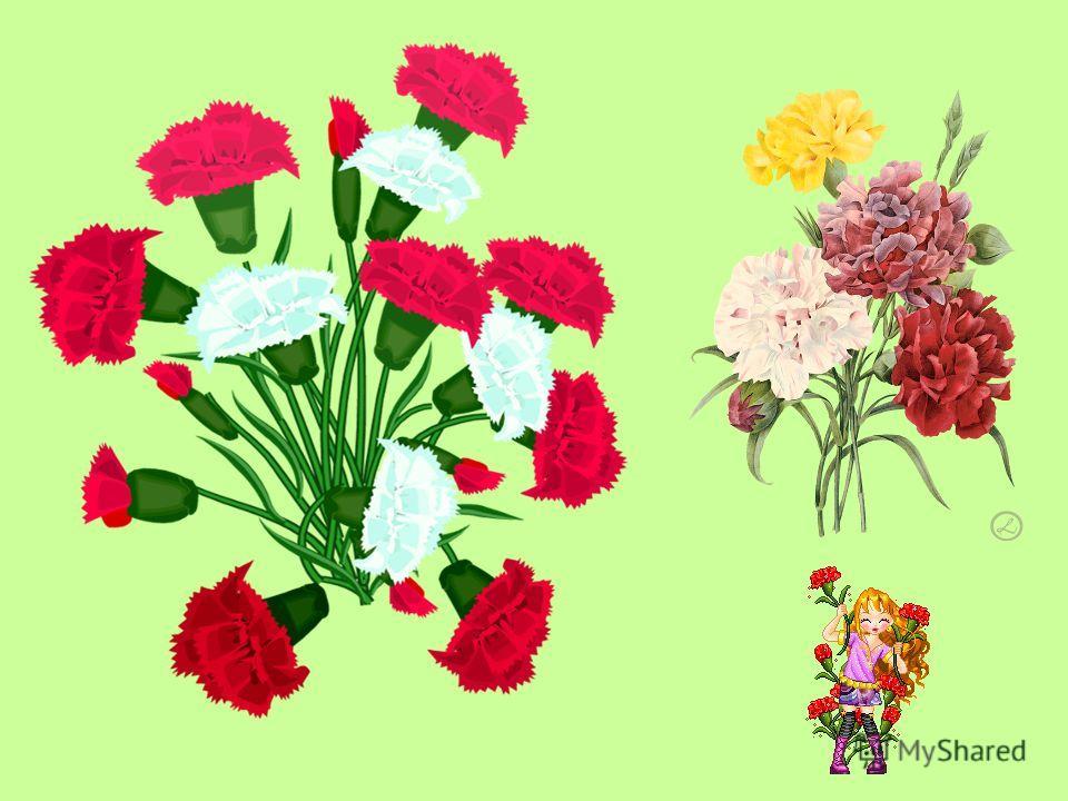 с давних времен цветы считали знаком