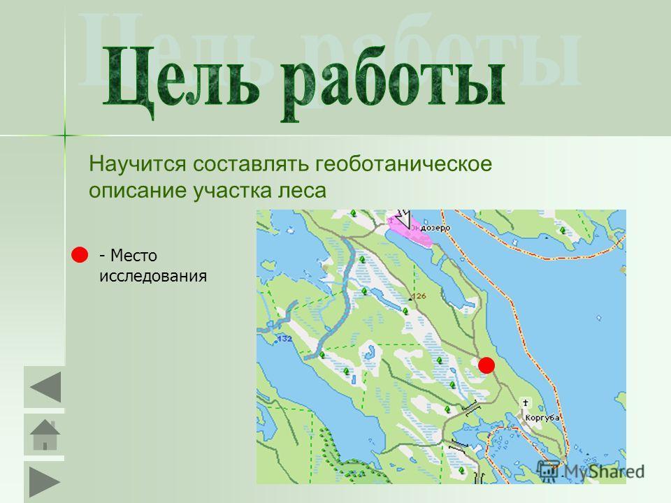 Научится составлять геоботаническое описание участка леса - Место исследования