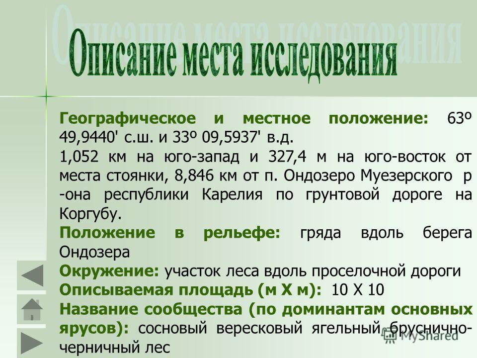 Географическое и местное положение: 63º 49,9440' с.ш. и 33º 09,5937' в.д. 1,052 км на юго-запад и 327,4 м на юго-восток от места стоянки, 8,846 км от п. Ондозеро Муезерского р -она республики Карелия по грунтовой дороге на Коргубу. Положение в рельеф