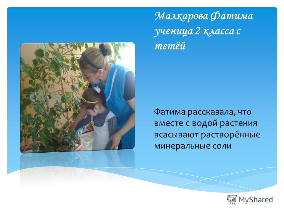 Малкарова Фатима ученица 2 класса с тетёй Фатима рассказала, что вместе с водой растения всасывают растворённые минеральные соли