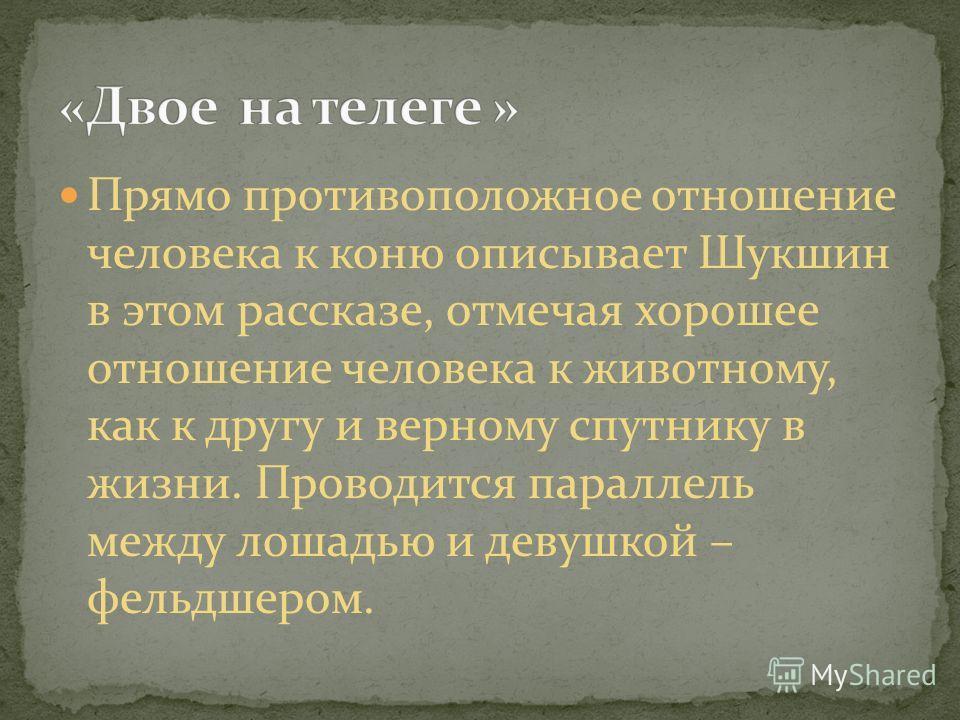 Прямо противоположное отношение человека к коню описывает Шукшин в этом рассказе, отмечая хорошее отношение человека к животному, как к другу и верному спутнику в жизни. Проводится параллель между лошадью и девушкой – фельдшером.