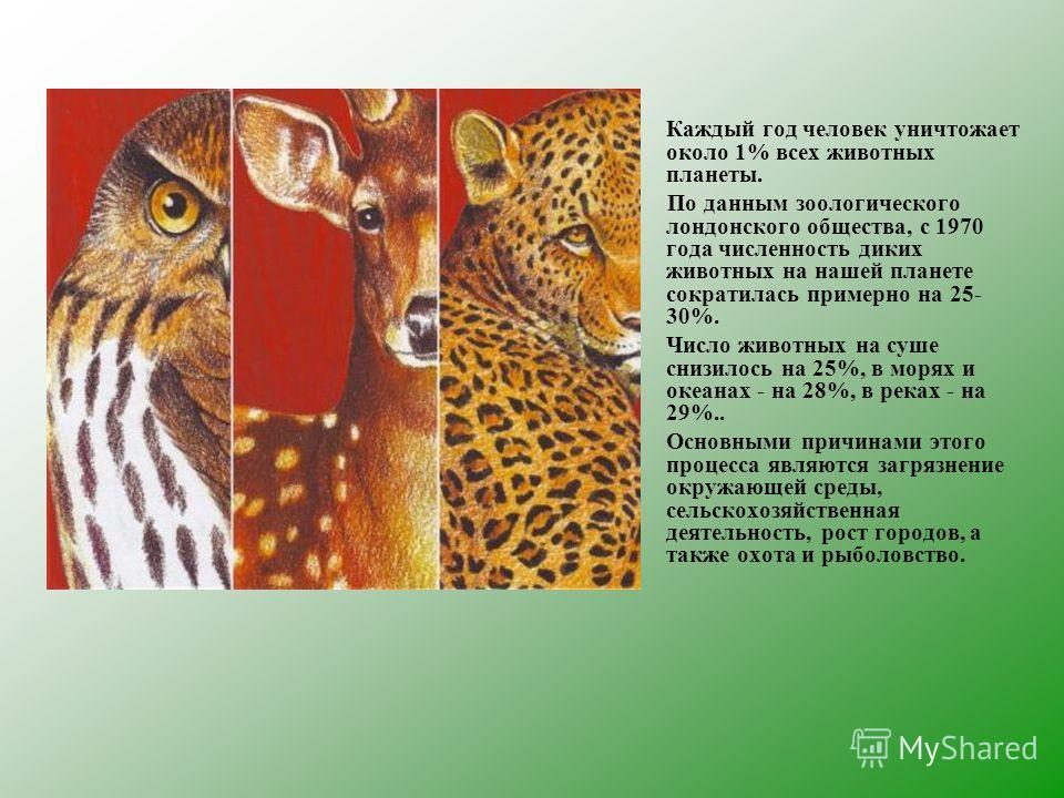Каждый год человек уничтожает около 1% всех животных планеты. По данным зоологического лондонского общества, с 1970 года численность диких животных на нашей планете сократилась примерно на 25- 30%. Число животных на суше снизилось на 25%, в морях и о