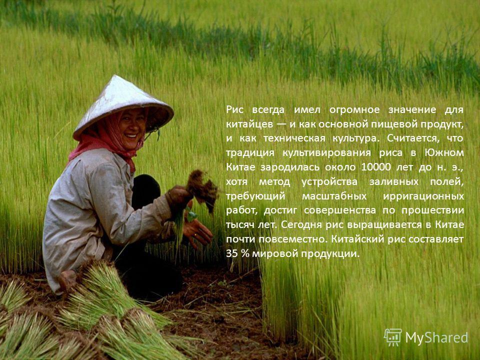 Рис всегда имел огромное значение для китайцев и как основной пищевой продукт, и как техническая культура. Считается, что традиция культивирования риса в Южном Китае зародилась около 10000 лет до н. э., хотя метод устройства заливных полей, требующий