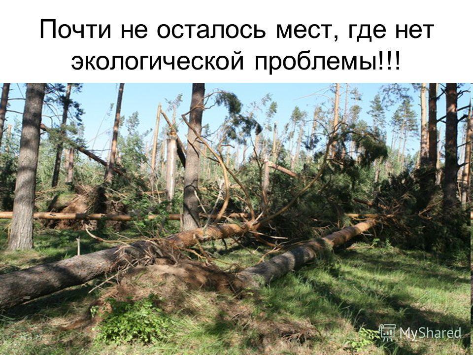 Почти не осталось мест, где нет экологической проблемы!!!