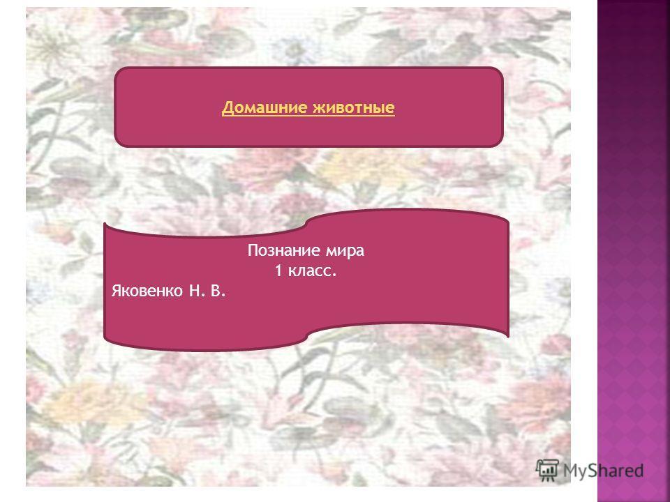 Домашние животные Познание мира 1 класс. Яковенко Н. В.