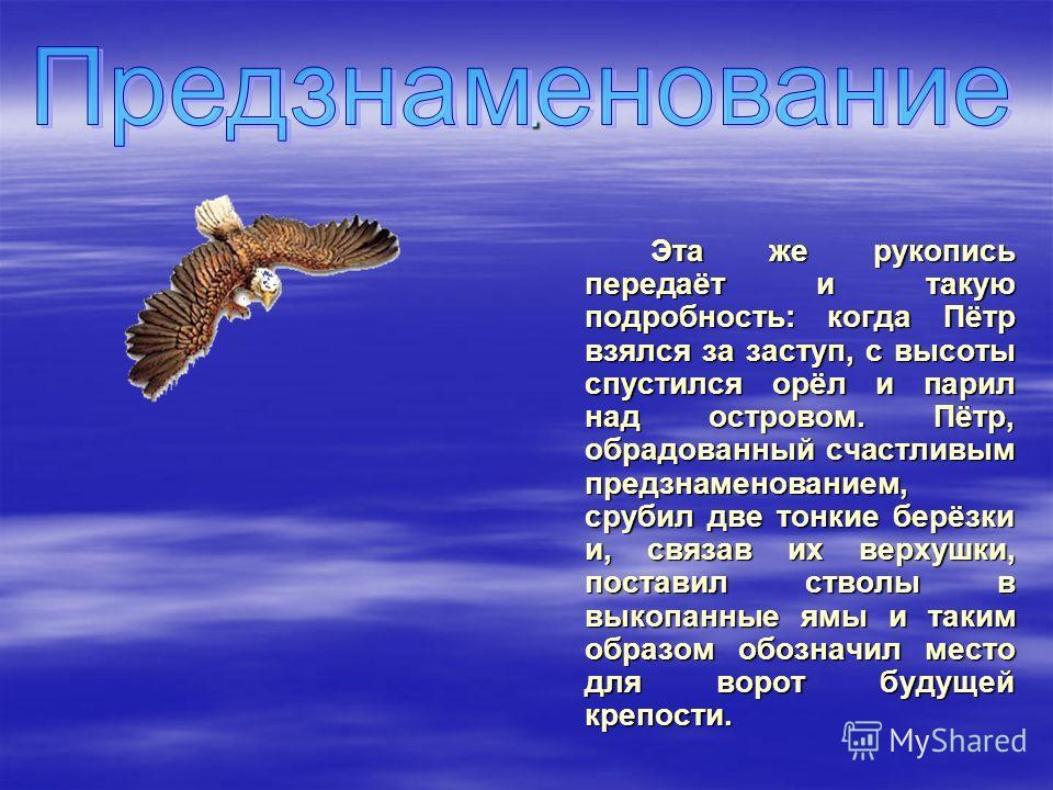 . Эта же рукопись передаёт и такую подробность: когда Пётр взялся за заступ, с высоты спустился орёл и парил над островом. Пётр, обрадованный счастливым предзнаменованием, срубил две тонкие берёзки и, связав их верхушки, поставил стволы в выкопанные