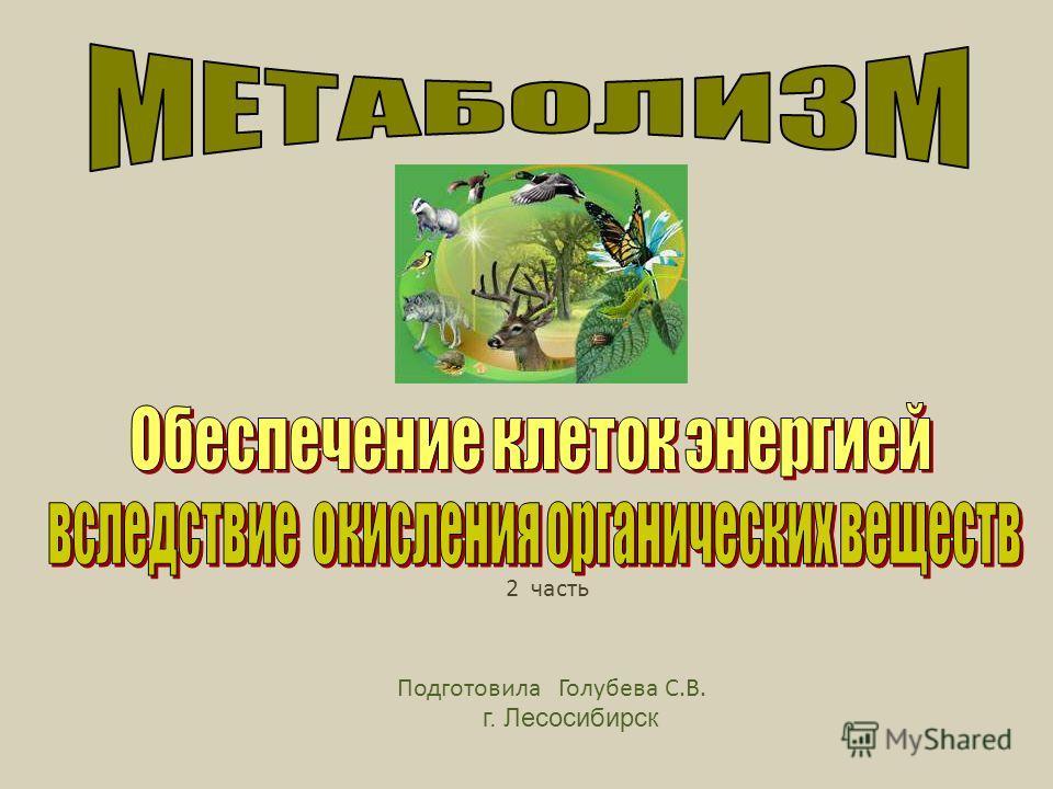 Подготовила Голубева С.В. г. Лесосибирск 2 часть