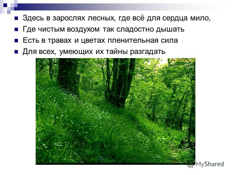 Здесь в зарослях лесных, где всё для сердца мило, Где чистым воздухом так сладостно дышать Есть в травах и цветах пленительная сила Для всех, умеющих их тайны разгадать
