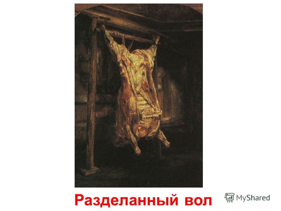 Портрет Хендрики Стофельс