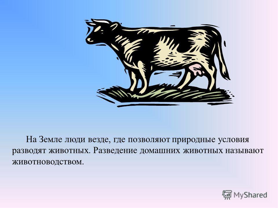Цель урока: Организовать работу по ознакомлению учащихся с отраслями животноводства, акцентировав внимание на особенностях местных условий для животноводства. Выделить некоторые хорошо известные породы животных и их отличительные черты.